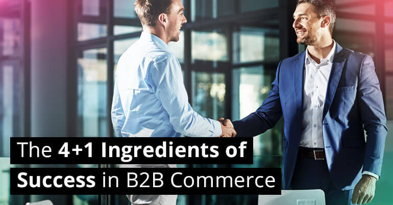 The 4 +1 Ingredients of Success in B2B Commerce